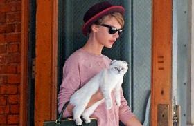 Taylor Swift és Olivia
