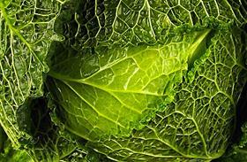 A 3 legerősebb rákellenes nyári zöldség