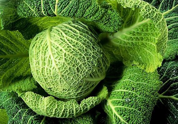 A kelkáposzta sok indolt tartalmaz, amely semlegesíti az egyes daganatok - például emlődaganat - növekedését serkentő ösztrogént. Főzelékként vagy megtöltve nagyon ízletes.