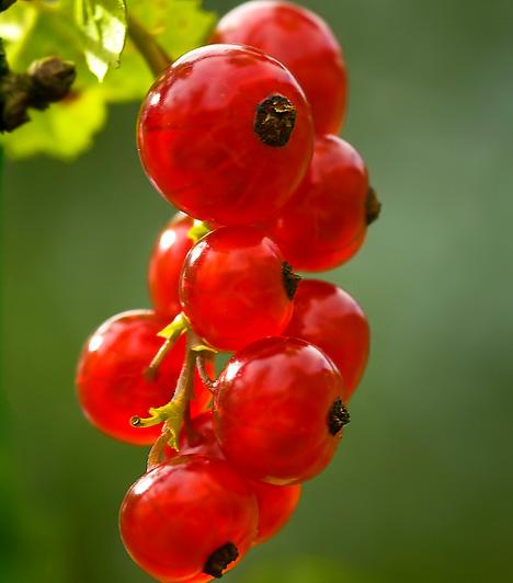Antioxidáns gyümölcsök