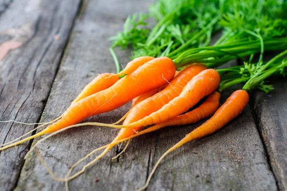 A sárgarépa köztudottan bővelkedik A-vitaminban és béta-karotinban, minek köszönhetően kiemelkedően fontos táplálék lehet a bőr szempontjából, gyakori fogyasztása nagyfokú védelmet képes nyújtani a nap okozta bőrkárosodásokkal szemben.