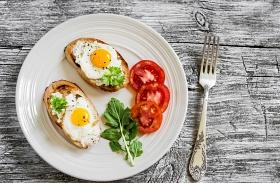 A tojás élettani hatása