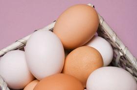 Rák megelőzése tojással