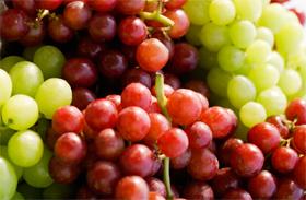 Őszi gyümölcs tulajdonság
