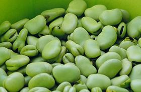 Az 5 leghatékonyabb zsírégető vitamin - Filléres csodaszerek