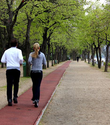 Nem bírod az aszfaltot? 8 budapesti zöld terep futáshoz