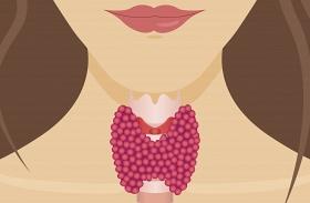 Ételek hormonális hízás ellen