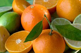 A lúgosító étrend 5 alapszabálya - Savtalaníts és karcsúsodj!