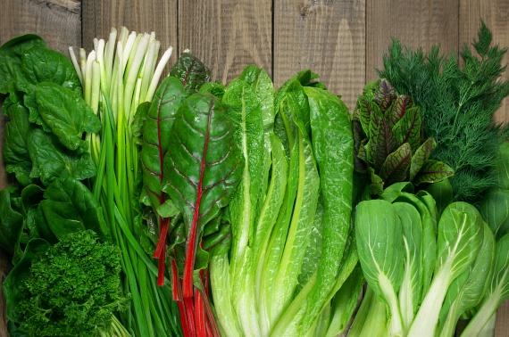 A különböző zöld leveles zöldségek annál jobbak, minél sötétebb zöld színnel rendelkeznek. Ez ugyanis klorofilltartalmukkal függ össze, ami segít a májnak a nehézfémek és más, roppant káros anyagok eltávolításában azáltal, hogy az epeváladék termelésének alapanyagául szolgál.