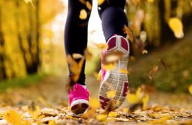 Melyik mozgás mennyi kalóriát éget el?