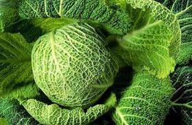 Rostban gazdag zöldségek