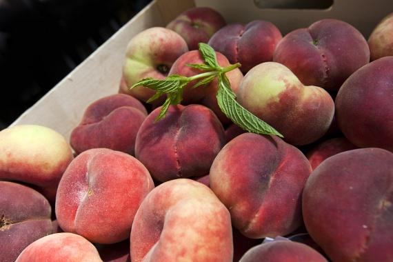 A gyümölcsök szintén a magas rosttartalomhoz hozzá nem szoktatott gyomor esetén váltanak ki puffadásos tüneteket, ahogy a magasabb cukortartalom is fokozott gázképződéssel jár. A szilva, az alma, a barack és a körte hajlamos ilyen tüneteket okozni, így ezeket érdemes fokozatosan bevezetni a rendszeresített táplálékok közé.                         Kezdetben akár párolt, főtt formában is fogyaszthatjuk őket. Természetesen hozzáadott cukor nélkül készüljenek el. A gyümölcsök puffasztó hatását, hámozással tudjuk csökkenteni. Gondot jelenthetnek még az apró magvas gyümölcsök. Ezek présnedveit fogyasszuk abban az esetben, ha panaszt okoznak. Egy pohár, azaz 2,5 dl 100%-os gyümölcslé egy adag gyümölcs elfogyasztásával egyenértékű.