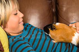 4 gyakori betegség, amit a házikedvencek terjesztenek