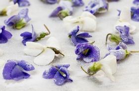 Kandírozott virágok