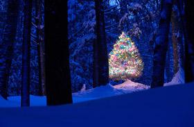 Az 5 legmeghatóbb karácsonyi film