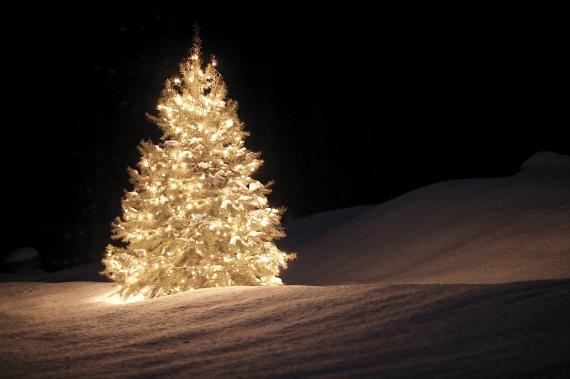 Az egész éjszakát felmelegíti a fehér fénnyel izzó karácsonyfa. Kattints ide a nagyméretű fotóért.