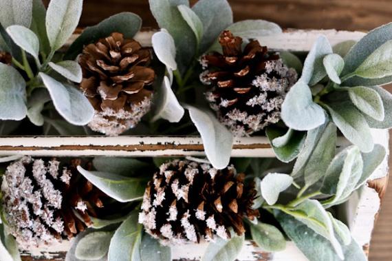Még téliesebbé varázsolhatod otthonodat egy kis műhó segítségével. A tobozok alját kend be ragasztóval, majd forgasd meg a hógranulátumban, amit előzőleg egy tányérra szórtál ki. Műhó helyett csillámot is használhatsz. Miután megszáradtak, díszítsd vele téli virágaidat. Még több fázisfotót ide kattintva találsz!