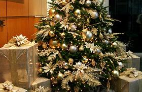 Karácsonyfa jellem
