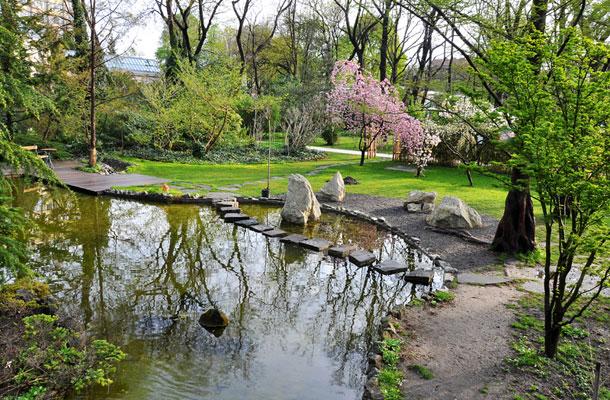 A japánkert - fotó: fuveszkert.org