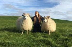 Izlandi farm udvara
