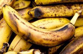 Túlérett banán felhasználása
