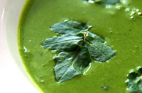 4 lúgosító, salaktalanító leves - Állítsd helyre a sav-bázis egyensúlyt!