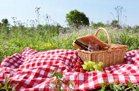 Receptek piknikhez