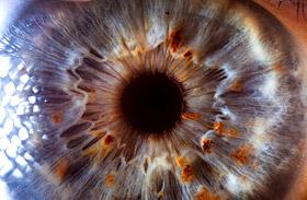 Így néz ki a szemed közelről