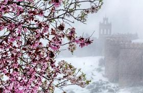 Márciusi havazás