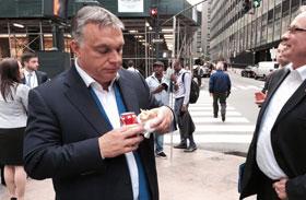 Orbán Kitarovic