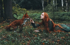 Róka fotózása