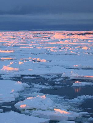 Széttöredező jégmező