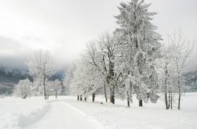 A tél veszélyei