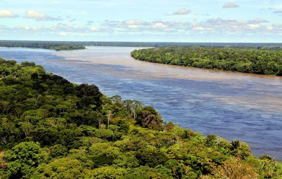Az Amazonas mentén húzódó trópusi esőerdők idővel teljes mértékben az erdőirtások áldozatául esnek. Ha tovább folytatódik a kereskedelmi és mezőgazdasági terjeszkedés, a már most is megritkított erdőből semmi nem marad.