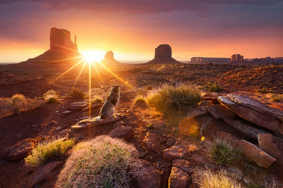 Az ég felé meredő vöröshomokkő-kibúvások között átszűrődő napfény szintén lélegzetelállító látványt nyújt.