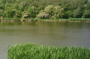 Garancsi-tó
