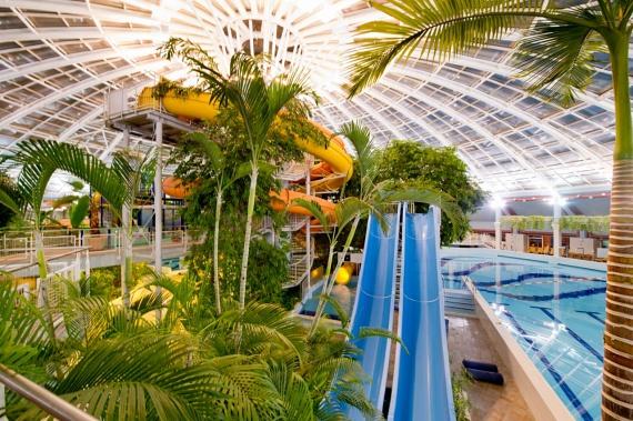 Az Aquaticum Debrecen igazi különlegesség a magyarországi fürdők között. A vízipark környezete és medencéi igazi trópusi hangulatot idéznek. A területen szauna, termálfürdő, csúszdák tömkelege és rengeteg élményelem: sodrófolyosók, mászófalak, barlangfürdők találhatóak, emellett pedig számos gyerekkedvezménnyel és wellnessprogrammal várják a látogatókat.