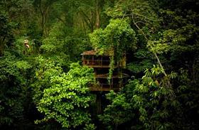 Nézd meg az első levegőbe épült várost! - Képeken Costa Rica büszkesége