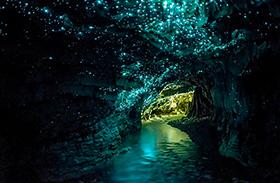 Szentjánosbogár-barlang Új Zélandon