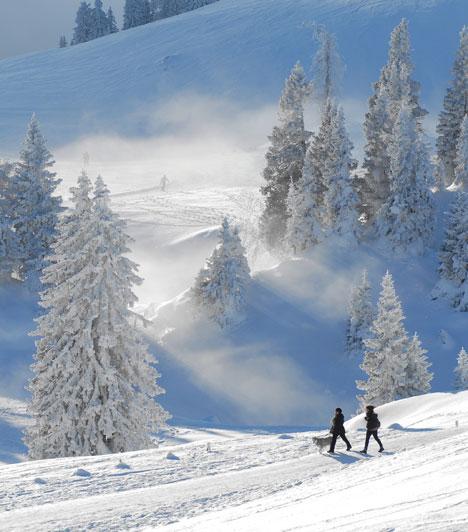Villach, a téli sportok kánaánja