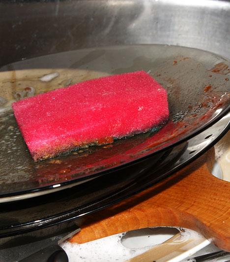 MosogatószivacsEgy Egyesült Államokban végzett kutatás során 352 háztartási szivacsot és 75 konyharuhát vizsgáltak meg. Minden hetediken találtak szalmonellavírust, és minden ötödiken staphylococcust. A mosogató és környéke állandó nedvességével és a használt tányérok ételmaradékaival paradicsomi körülményeket teremt a kórokozók számára.Kapcsolódó cikk:Szalmonella a mosogatószivacson »