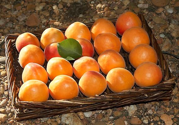 Az aszalt sárgabarack kitűnő vasforrás, a friss gyümölcs fogyasztásával pedig lúgosíthatod a szervezetedet.