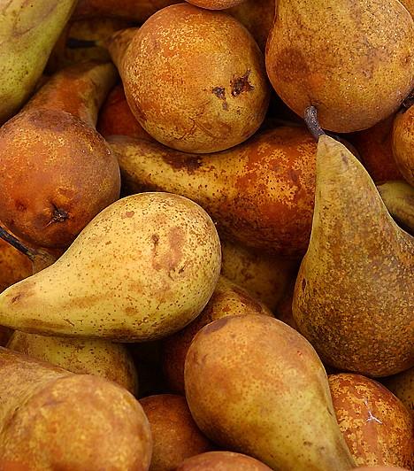 Körte                         A körte nem csupán ínycsiklandóan finom, de a legerősebb salaktalanító, méregtelenítő gyümölcsök egyike is. Magas rosttartalmának köszönhetően segít átmosni a bélcsatornákat: a tápanyagok könnyebben szívódnak fel, a méreganyagok pedig könnyebben távoznak.                         Kapcsolódó cikk:                         Méregtelenítő, vértisztító, zsírolvasztó ételek »