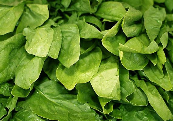Legyen szó vashiányos anémiáról vagy vészes vérszegénységről, mindkét esetben hasznos táplálék lehet a spenót.