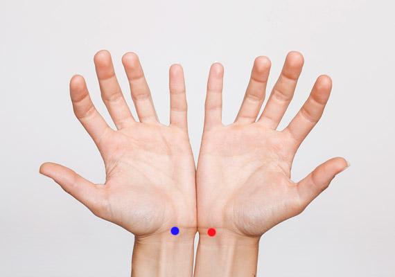 A kékkel jelölt Szb-7-es pont - Nagy domb - a kéztőízület belső redőjének pontosan a közepén található. A pirossal jelölt - Sz-7-es - A lélek kapuja - közvetlenül a kéztőízületen, a singcsont oldalán található. Erős masszírozásukkal orvosolható az alvászavar.