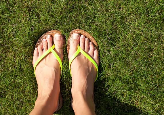 A tangapapucs, vagy más néven flipflop viselése nem javasolt a strandon kívül. Ha a pántok lazák, a lábujjaidat folyamatosan be kell húznod ahhoz, hogy a papucs a lábadon maradjon. Ennek következtében pedig könnyen ízületi problémáid alakulhatnak ki.