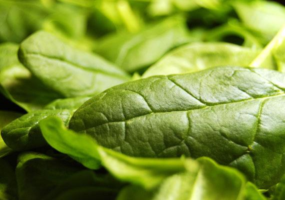 A zöld leveles zöldségek, például a spenót, igen gazdagok folsavban, mely a hajra gyakorolt, már említett áldásos hatások mellett a bőr szépségéért is sokat tehet.