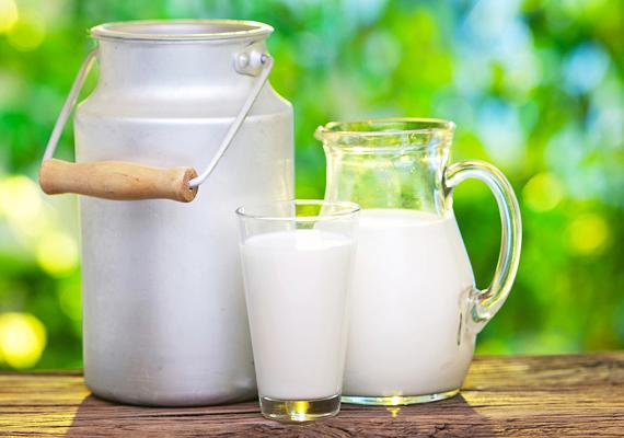 Ugyanez igaz a tejtermékekre, a sajtokra, joghurtokra is, melyek a fehérje-, illetve a kalciumbevitel szempontjából is kiemelkedően fontosak.