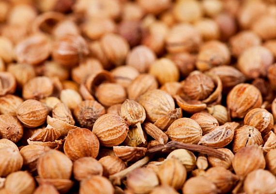 Rendkívül fontos a fűszerek megválasztása: a koriander például erős gombaölő hatással bír - a Candida-diéta egyik fontos eleme.