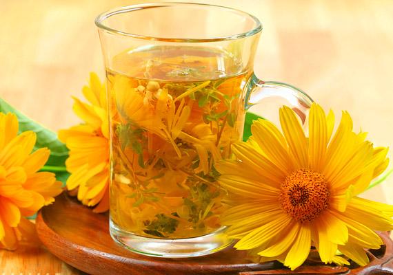 A körömvirágot - Calendula officinalis - talán csak krém formájában ismered, ám gyulladáscsökkentő hatásának köszönhetően kiváló felfázás elleni tea készíthető belőle. Forrázz le egy teáskanál körömvirágot két és fél deci vízzel, majd lefedve hagyd ázni öt-tíz percig, ezután szűrd le. Fogyassz belőle napi két-három csészével. Tudj meg többet a növényről!